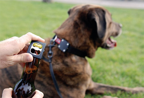 Bark 4 Beer Dog Collar Bottle Opener