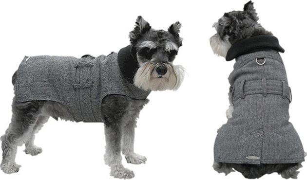 Wall Street Dog Trench Coat