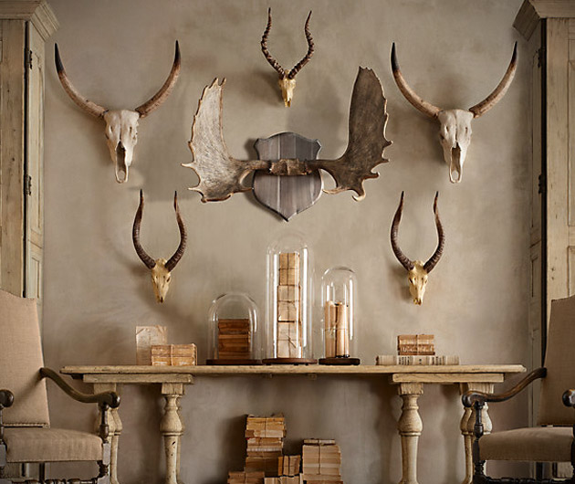 Restoration Hardware Horns & Antlers