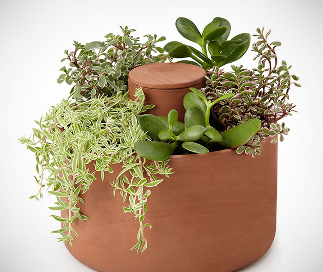 Joey Roth Self-Watering Planter
