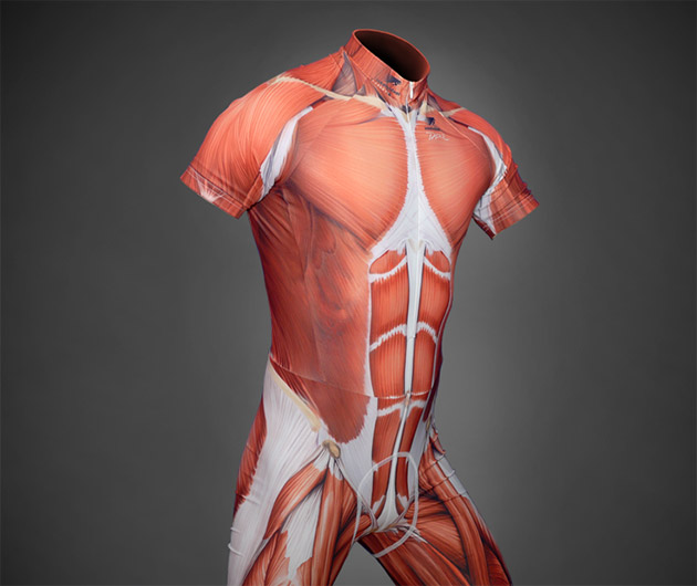 MuscleSkinSuit