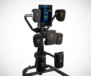 Nexersys Boxing System