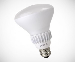 Cree LED Flood Light Bulb