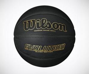 Wilson Evolution Black Edition Basketball