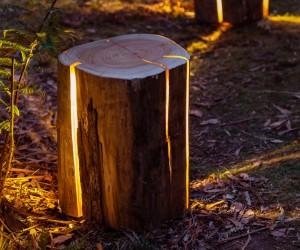 Stump — The Cracked Log Table/Stool