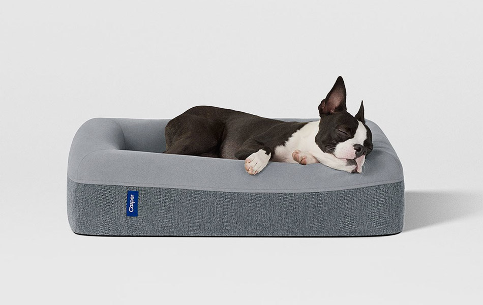 Matress Firm Dog Bed