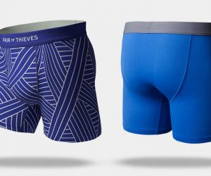 Pair of Thieves Boxer Briefs