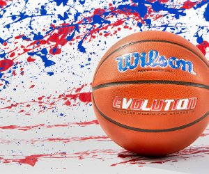Wilson USA Special Edition Evolution Basketball